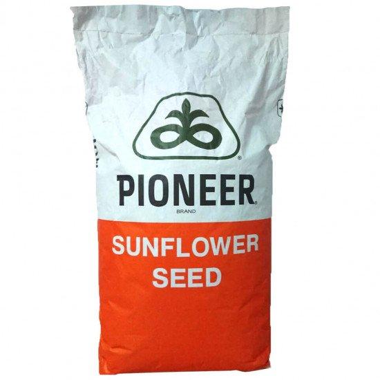 Семена Подсолнечника ПР64Ф50 (Оригинал)