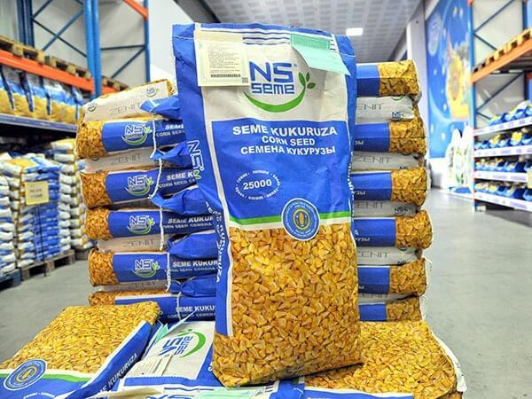 купити насіння кукурудзи нс семе юг агролідер