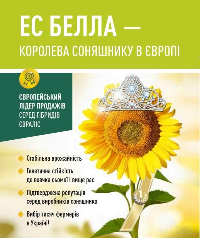 Подсолнечник Белла Евралис