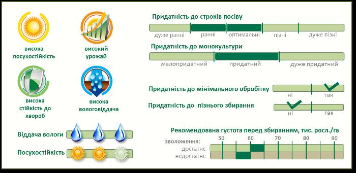 Насіння Кукурудзи ПР37Н01 (PR37N01) Піонер Характеристики