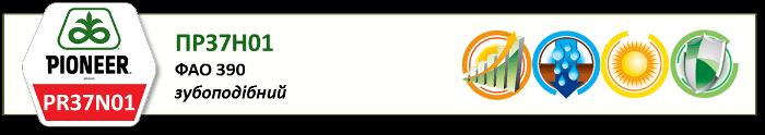 Насіння Кукурудзи ПР37Н01 (PR37N01) Піонер