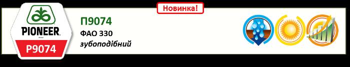 Насіння Кукурудзи П9074 (P9074)